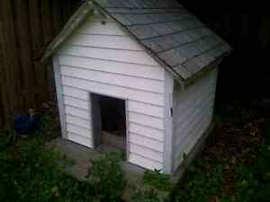 Huge dog house cheap 50 $