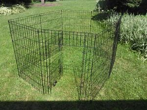 Training cage for dogs