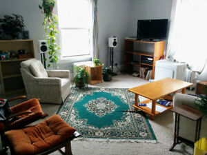 Roommate wanted for Big & Bright Hydrostone apt - heat included!