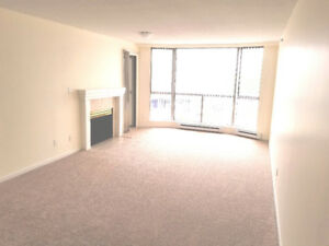 One Big Bedroom Apartment plus Solarium (405-488)