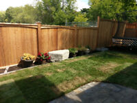 Spruce up the yard with a new fence or deck!