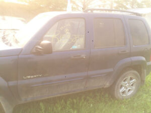 Jeep Liberty Driver Doors - 2003