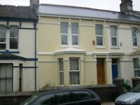 Double room to let in professional shared house PL4