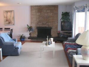 Clean, Bright, Furnished Room & Garage Space in South Edmonton