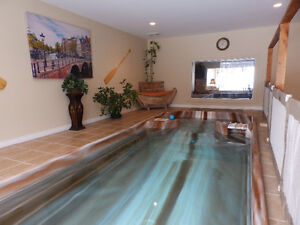 LAKE FRONT OLDER CABIN WITH INDOOR POOL ON LAC. ST. ANNE