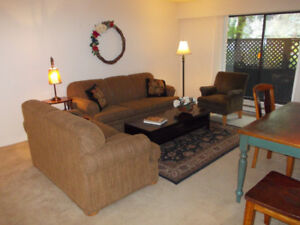 FULLY FURNISHED THREE BEDROOM APARTMENTS