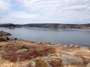 1.8 ACRE OCEAN FRONT ESTATE, BURKE'S COVE, COLLIERS St. John's Newfoundland image 4