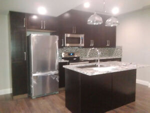 New Basement Suite in Windermere SW Edmonton
