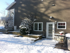 Cozy one bedroom basement apartment in Enfield
