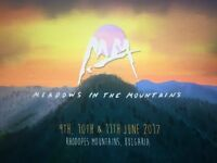 1 x Meadows In The Mountains Ticket