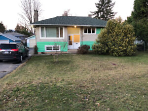 Just Newly Renovated 3 BR & 1 BT Upper Level House in Surrey