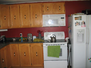 Renavated furnished 2 bedroom house near Long Harbour, Bull Arm St. John's Newfoundland image 5