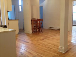 Large 3 bedroom, 5 mins walk to McGill University, Renovated.