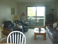 2 Bedroom Suite at The Cedars Available Now or June 1st