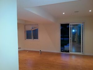 Home Renovation & Basement Finishing Kitchener / Waterloo Kitchener Area image 4