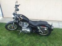 2010 Harley Davidson Sportster XL883L Fall Special