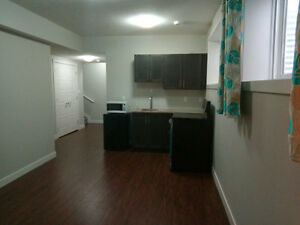 FREE RENT FOR ONE MONTH ( New Basement)