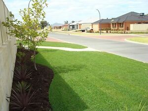 Turf for sale Blacktown Blacktown Area Preview