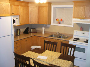 Everything included Lovely 2 bedroom above ground apt Mt. Pearl