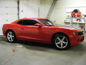 """Tint Your Ride"" at Steves Autoshine.com"