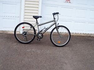 26 in 18 speed Bonelli bike