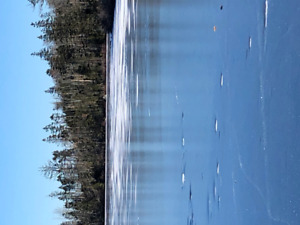 lake front lot 16 acres off grid goose lake chezzetcook