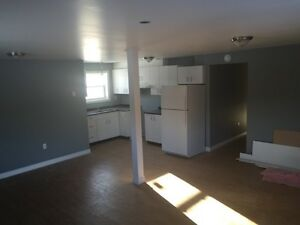 BRAND NEW, LARGE, BRIGHT. PRIVATE, TWO BEDROOM