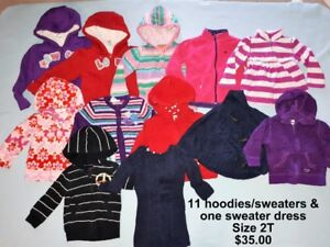 Girls Clothing in Size 2T
