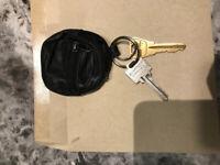 Found - set of house keys