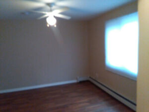 Sublet with option to renew - Bachelor pad in North End Halifax