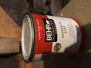 Self priming paint