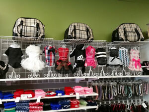 Vêtement pour chien et pour chat Rive-sud de Montréal