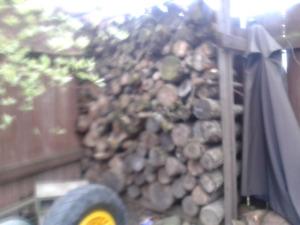 Dry Hardwood Firewood - $80