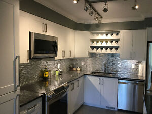 Bright 3 BR Fully-renovated EXEC Townhouse in Hunt Club Park wit