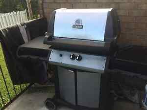 Stainless Steel BBQ