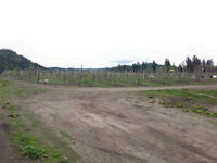 ORCHARD FOR SALE