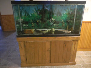 90 GALLON FISH TANK WITH WOOD STAND AND CANOPY