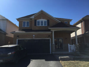 Legal WalkOut Two-Bedroom Apart. newly renovated in North Oshawa