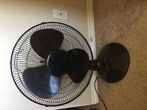 Oscillating table fan large