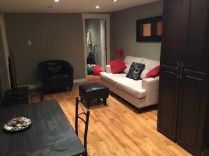 One bedroom fully furnished apt in Downtown area .