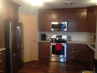 Roommate needed in Beautifully renovated condo.