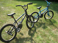 BMX Bikes with Pegs