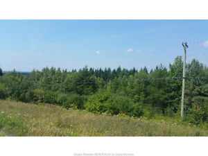 17 MCFARLANE ROAD, BERRY MILLS! 3 ACRES OFF THE HOMESTEAD RD.