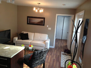 One bedroom modern Fully Furnished ground level apt Downtown.