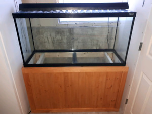 90 GALLON HAGEN AQUARIUM WITH STAND