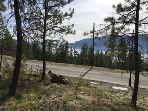 Build Your Lake View Home on this 6.7 Acre Lot