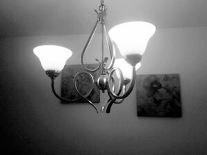 for sale brushed nickel light fixture