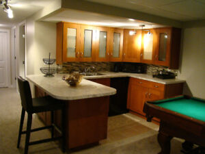 Brand new fully furnished Basement available right away