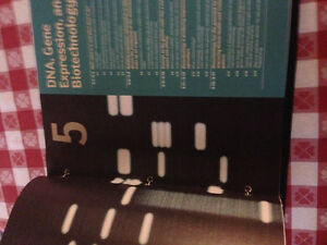What is Life:A Guide to Biology,with prep-u,Concordia textbook. West Island Greater Montréal image 4