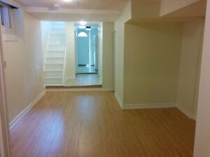 Newly renovated basement apartment at East-end Danforth